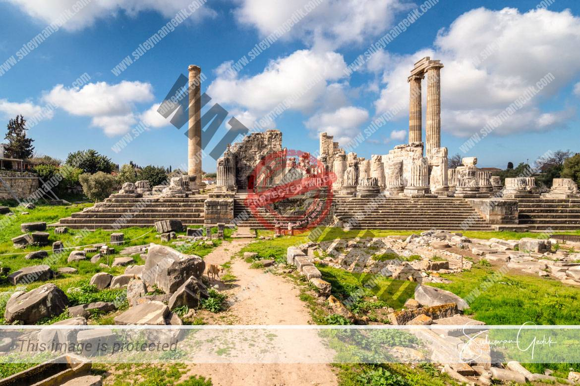 Didyma Ionia Ancient Greek Archaeological Aydın Turkey