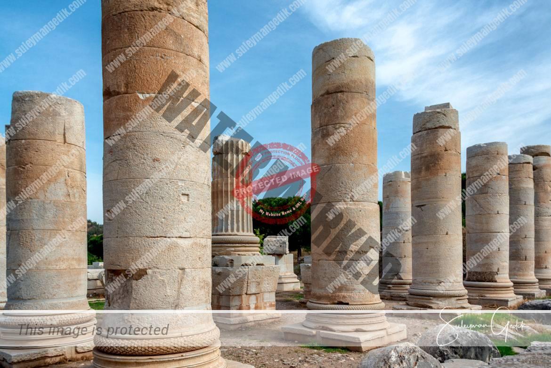 Artemis Temple Sardis Sardes Lydia Salihli Manisa Turkey Ancient Greek Archaeological