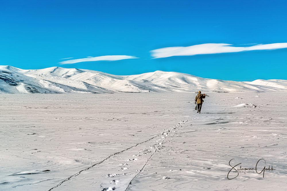 Turkey, çıldır, fish, kars, lake, snow, Winter